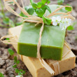 Natural Handmade Soap — Foto Stock