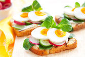 Toast sandwiches — Stock Photo