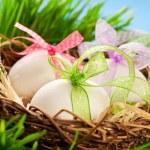 Easter eggs — Stock Photo #8519054