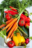 Different fresh vegetables — Stock Photo