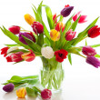 Colorful tulips — Stock Photo #8905426