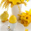 Easter egg and flowers — Stockfoto