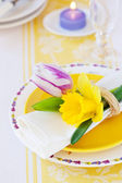 Spring place setting — Stock Photo