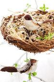 Oiseaux et des œufs dans un nid de Pâques — Photo