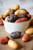 Diverse nya potatis — Stockfoto