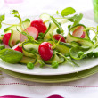 Spring salad - Stock Photo