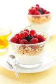 Yogurt ,muesli ,berries and honey — Stock Photo