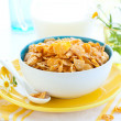 Corn flakes and milk — Stock Photo #9861554