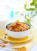 Cornflakes und milch — Stockfoto