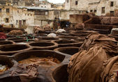 Morocco Fez Tannery close up view — Stok fotoğraf