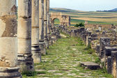 Old Roman Columns and Citry Entrance, Volubilis, Morocco — Stock Photo