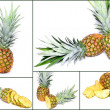 Pineapple — Stock fotografie
