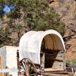 Ramshackle wagon — Stock Photo #10415452