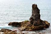 Одинокая скала — Стоковое фото
