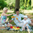 Family picnick on the outdoors — Stock Photo #9469530