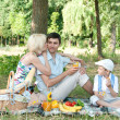 Family picnick on the outdoors — Stock Photo #9469545