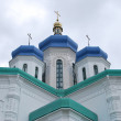 Holy Trinity Cathedral. Kiev, Troyeshchina. — Stock Photo