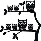 Owl family — Foto Stock