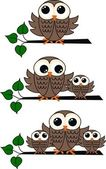 Brown owls — Stock Vector