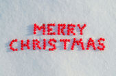 Merry Christmas written by berries on the snow — Stock Photo