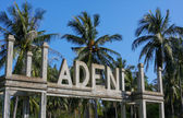 Adeni paradise with palm — Stockfoto