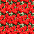 Royalty-Free Stock Photo: Red Tulips Pattern