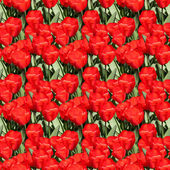 Red Tulips Pattern — Стоковое фото