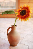 Orange sunflower in a vase — Stock Photo