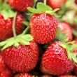 Freshness strawberries closeup — Stock Photo