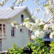 House in spring blossom garden — Stock Photo #8108685