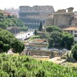 Stock Photo: View of Colosseum in Rome, Italy