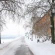 Winter alley in the Kremlin Nizhny Novgorod Russia — Stock Photo