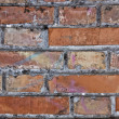 Red brick wall — Stock Photo #8651485