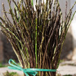 Stock Photo: Wild asparagus I