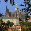 Prague — Stock Photo #8624774