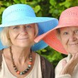 Stock Photo: Happy women in hats.
