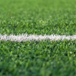 The white stripe on the football field — Stock Photo #10533174