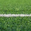 Stock Photo: White stripe on football field