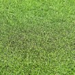 Stock Photo: Artificial turf football field