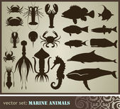 Marine animals — Stock Vector