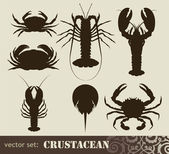 Crustacean set — Stock Vector