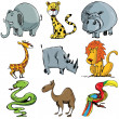 Set of cartoon wild animals — Stock Vector
