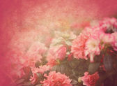 Grunge floral texture — Stock Photo