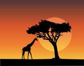 Africa landscape - vector — Stock Vector