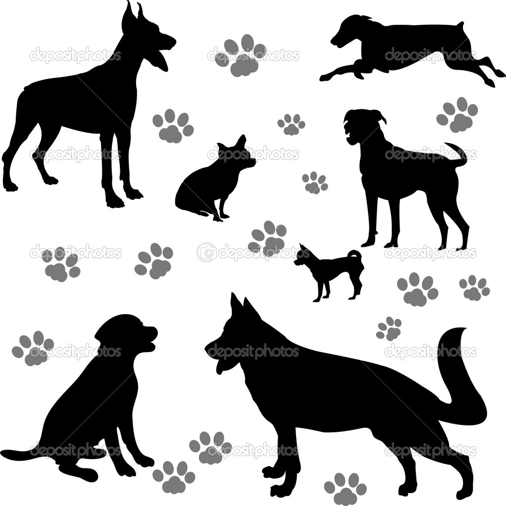 Collection of silhouettes of different races of dogs - vector — Stock Vector #9204935