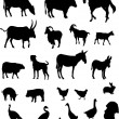 Royalty-Free Stock Vector Image: Farm animals collection - vector
