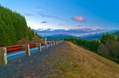 Road Towards Mt St Helen — Stockfoto