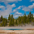 Geyser Landscape — Stock Photo #8950670