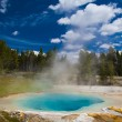 Geyser — Stock Photo