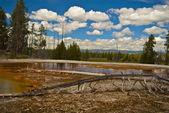 間欠泉の風景 — ストック写真